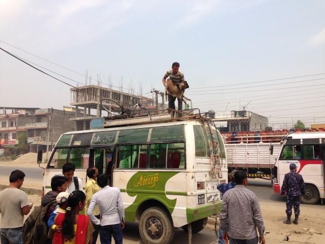 nepal2014 525 (Small).jpg